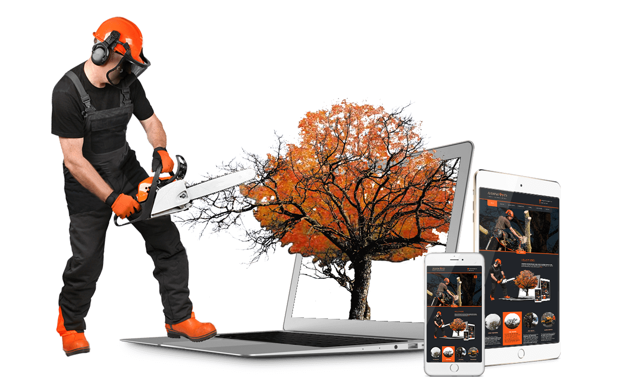 Tree Surgeons Croydon