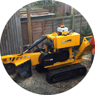 Stump Grinding Croydon